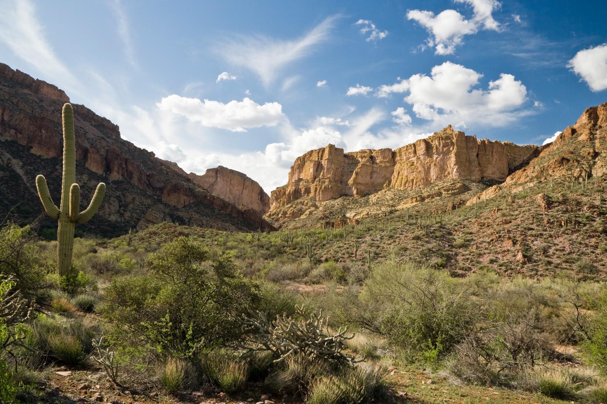 Apache Trail Leisure Travel Vans
