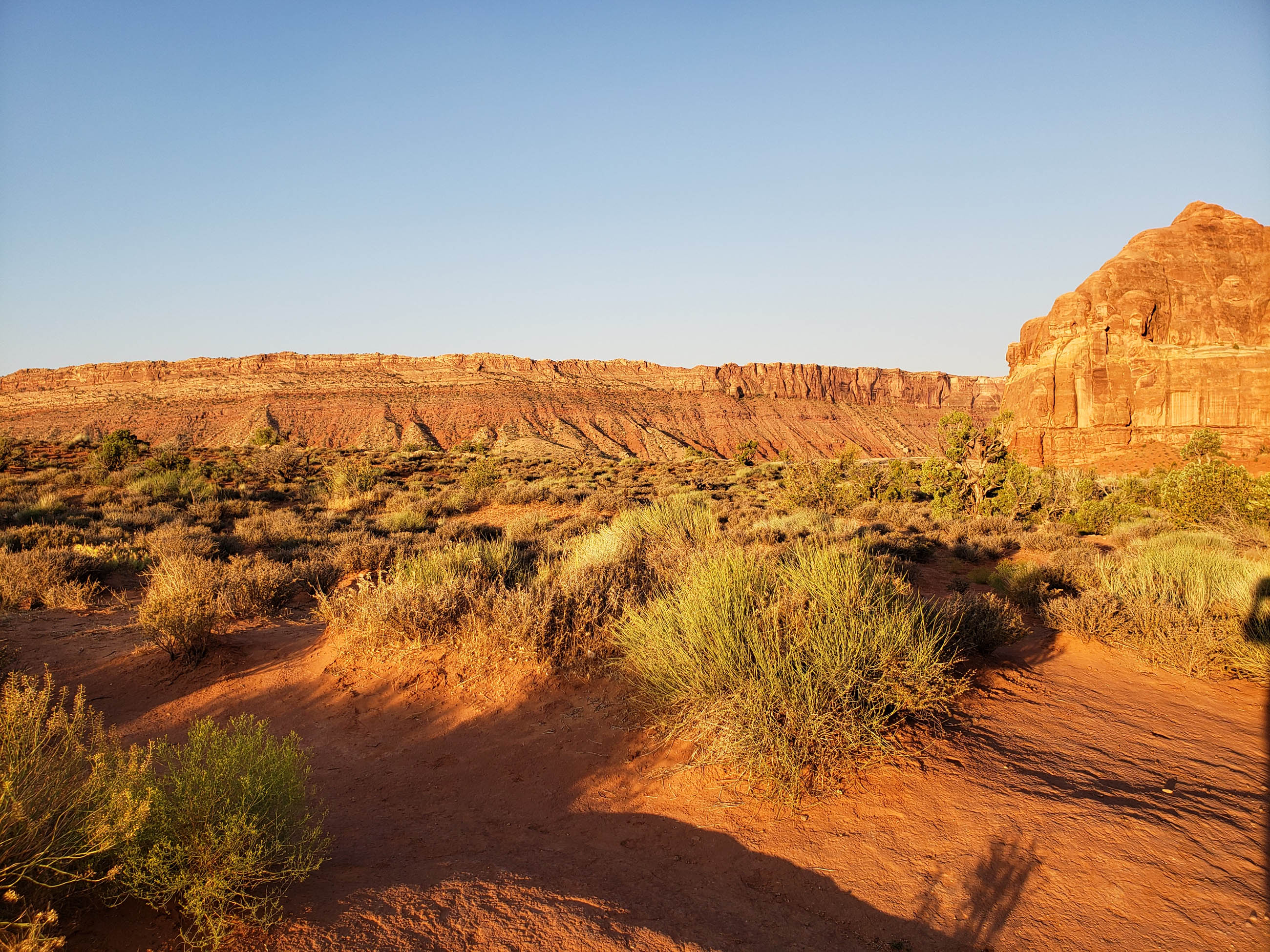 desert view of Arches National Park