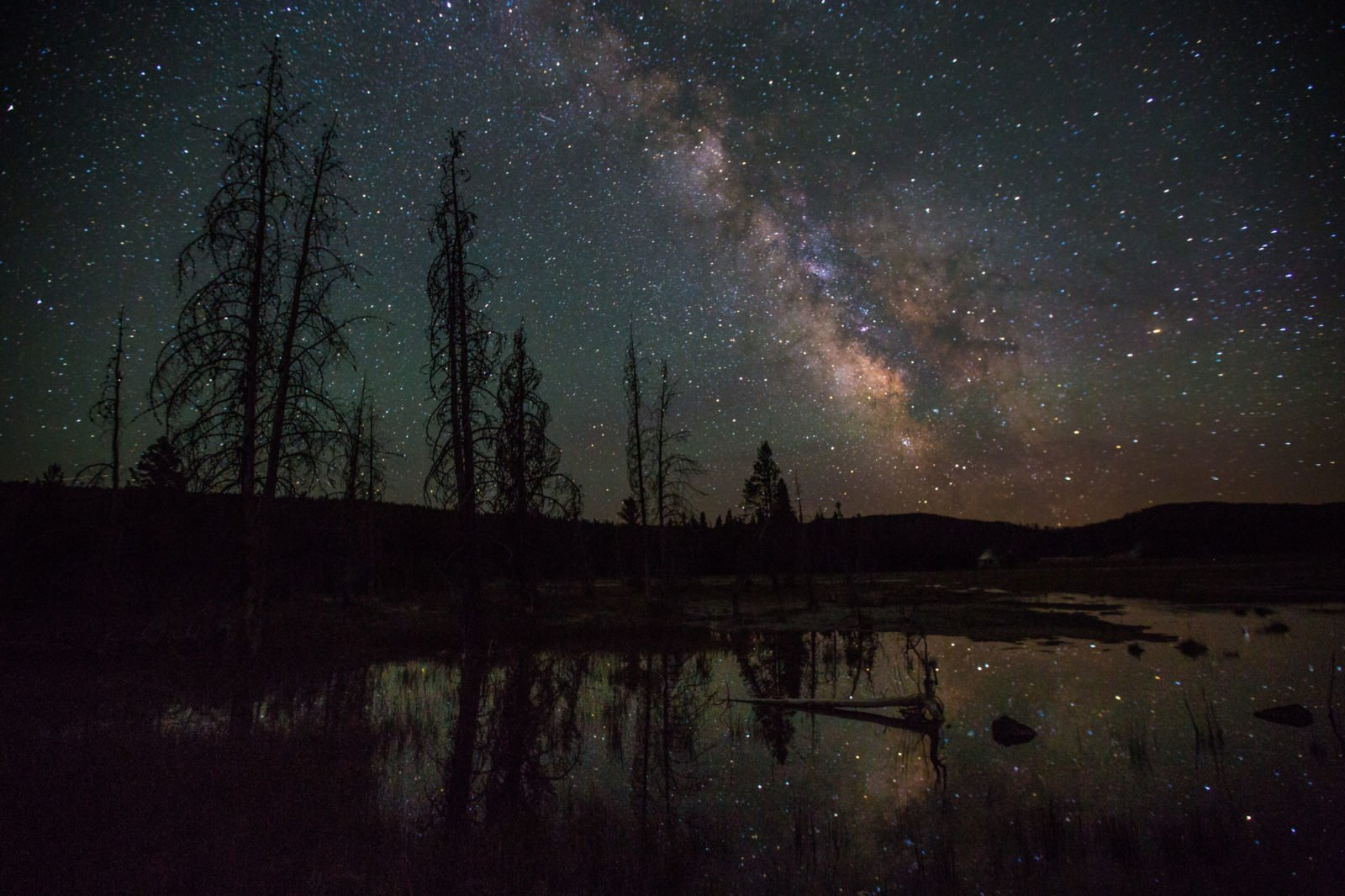 night sky at yellowstone national park
